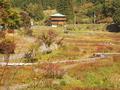 かのせ温泉 赤崎荘