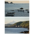 アザラシの見える宿 民宿スコトン岬 (旧:アザラシの見える宿 礼文島スコトン岬<礼文島>)
