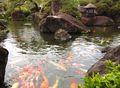 石和温泉 ホテル石庭