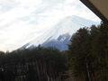 エバーグリーン富士