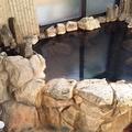 別府温泉 自家源泉かけ流しの宿 新ほり井