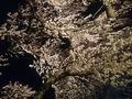 白布温泉 湯滝の宿 西屋