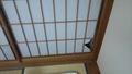 センチュリオンホテルリゾート&スパ テクノポート福井(旧:港のホテル)