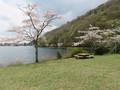 天然温泉「さくやの湯」スーパーホテル富士宮