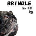 BRINDLE*Life with Dogs*