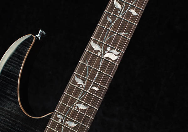 ibanez_rg8820b_inlay.jpg