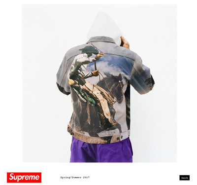 Supreme-2017ss-teaser-advertising-20170201.jpg