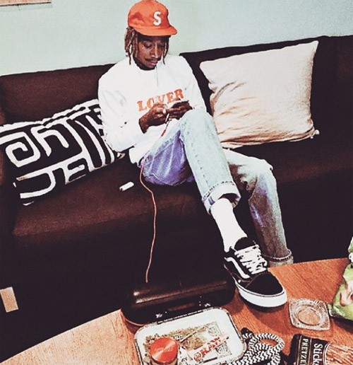 wiz-khalifa-vans-old-skool-2のコピー.jpg
