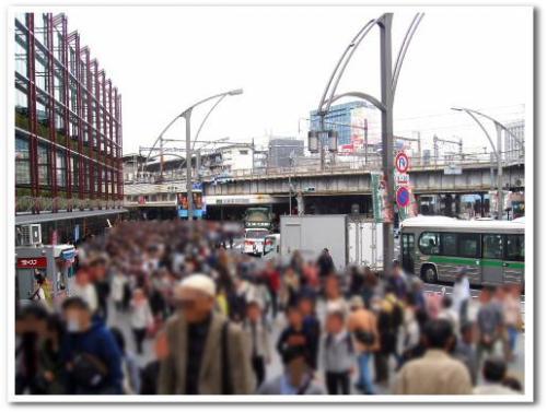 花見 桜 名所 オススメ スポット 東京 2013 上野公園002.jpg