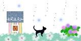 6月の黒猫.jpg