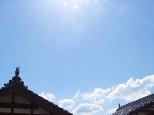 広島県北部の瓦 しゃちほこ.jpg