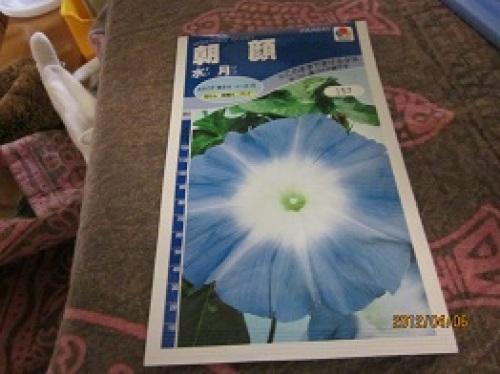 IMG_2012朝顔の種.jpg