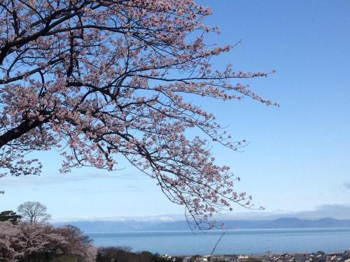 彦根城から琵琶湖を望む.jpg