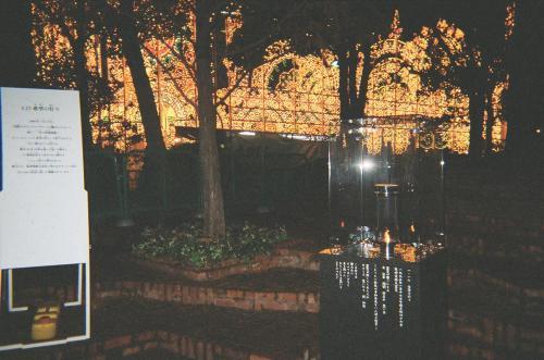 神戸ルミナリエと1・17希望の灯り.JPG