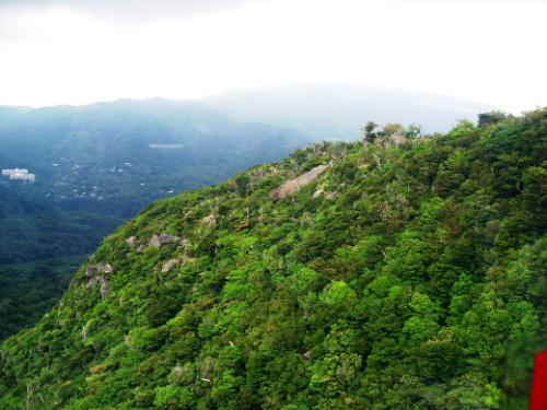 箱根フリーパスを使って箱根・芦ノ湖を観光してみた 005.jpg
