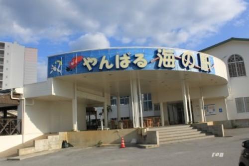 沖縄諭 235.JPG