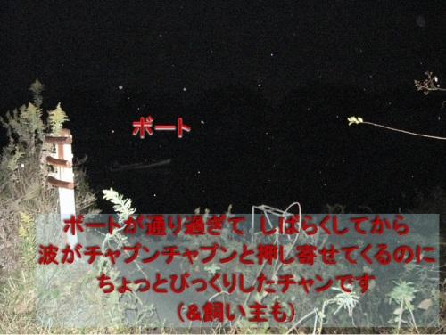 チャン18.jpg