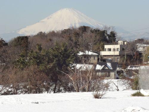 雪に富士山.JPG