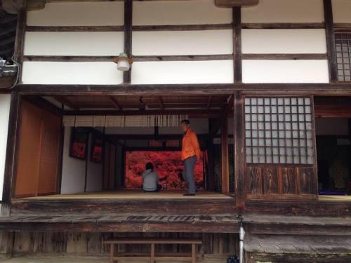 2015-11-10 11.安国禅寺