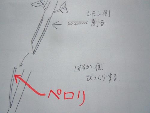 DSCN9911 (640x480).jpg