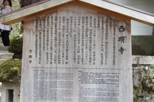 kyotosatoshi 375.JPG