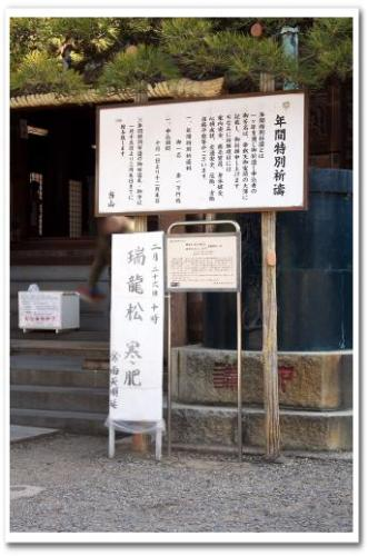 柴又帝釈天 瑞龍松 寒肥 日本酒 2013 006.jpg