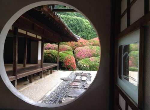2016-05-29 5.頼久寺