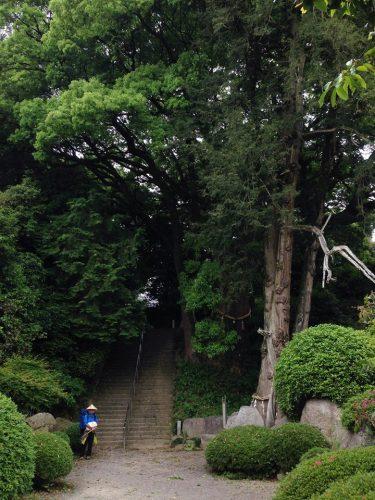 大興寺.jpg