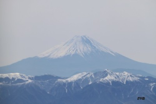 kyotosatoshi 033.JPG