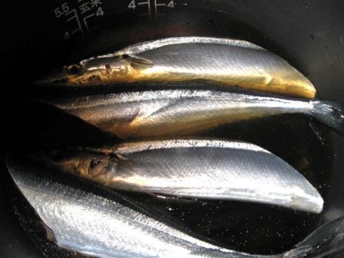 秋刀魚飯1.jpg