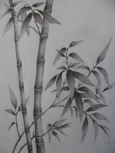 ークルで书いた铅笔画は-日 草