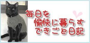 楽天ブログバナー.jpg