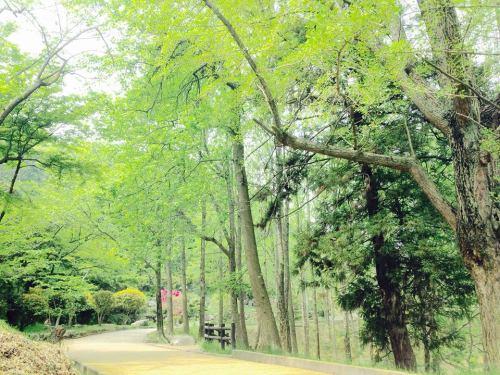 2015-04-28桃陵公園.jpg