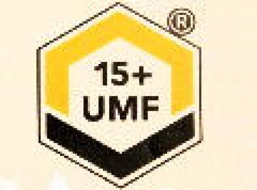 IMG_UMF.JPG