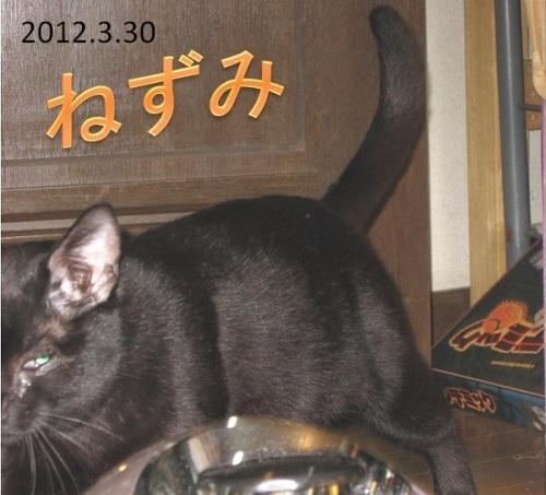 2012_03_30ねずみ.jpg