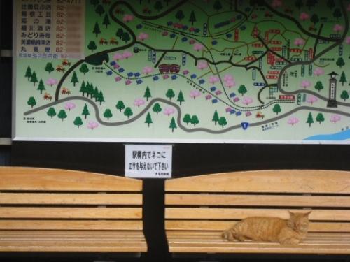 箱根フリーパスを使って箱根・芦ノ湖を観光してみた 054.jpg