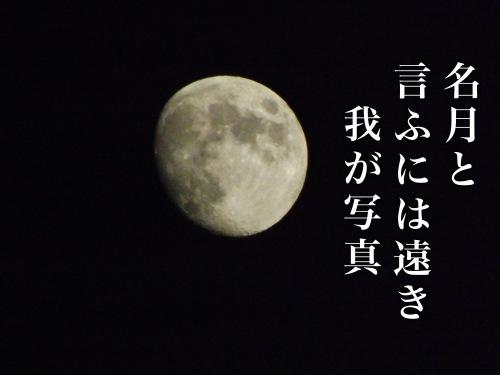201310161739_5625_iphone.jpg
