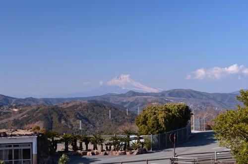 伊豆シャボテン公園20120204.jpg