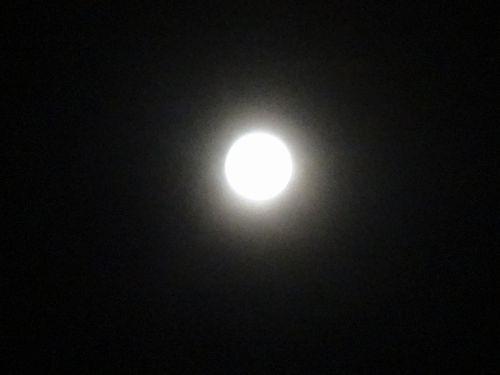 満月-S.jpg