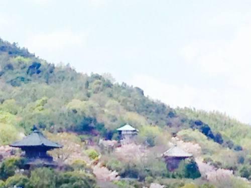 海岸寺.jpg