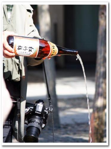 柴又帝釈天 瑞龍松 寒肥 日本酒 2013 013.jpg