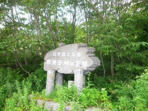P1030039.jpg
