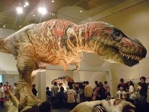 新説・恐竜の成長