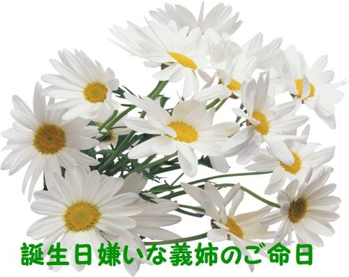 flower3991.jpg