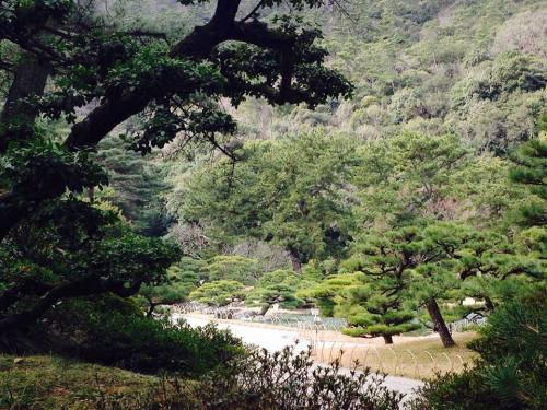 栗林公園・南5.jpg