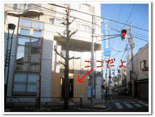 うさぎ専門ペットショップ「うさぎのしっぽ」柴又店 画像008.jpg