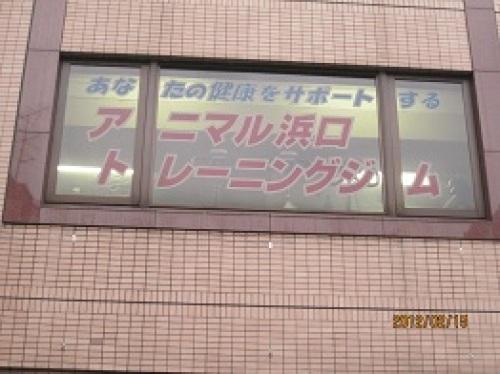 IMG_1703アニマル浜口.jpg