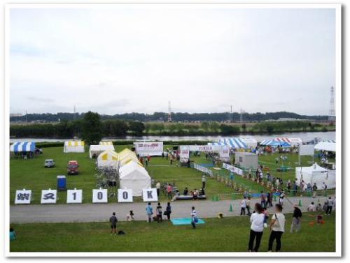 東京柴又100k 2013 葛飾 ウルトラマラソン 003.jpg