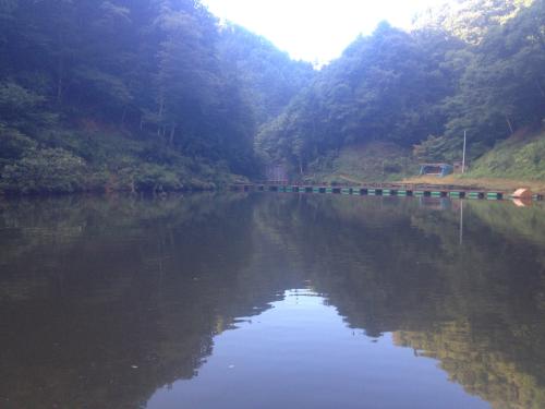 201208192147_3592_iphone.jpg