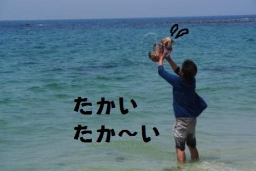 波ジャンプ4.JPG